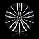 TPG1 Black polished